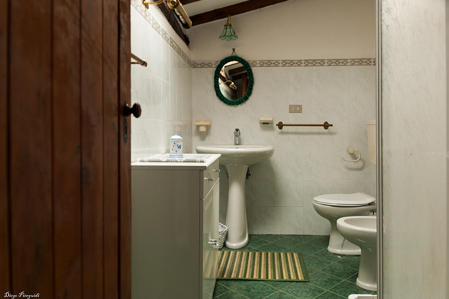 Scoiattolo--bagno